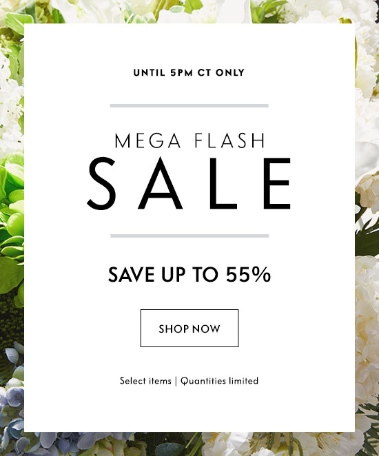 Shop Mega Flash Sale